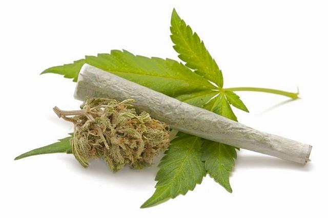 marihuanalevel1
