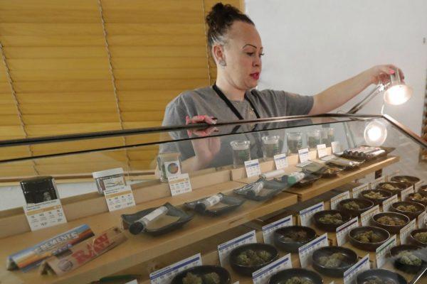 Kész legalizálni a marihuánát Kanada